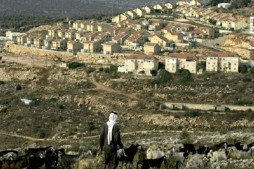 UN Slams Expansion of Illegal Settlements in Occupied Palestine